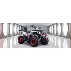 MX 220 OFF ROAD